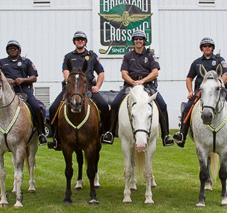 IMPD Mounted Unit Horses