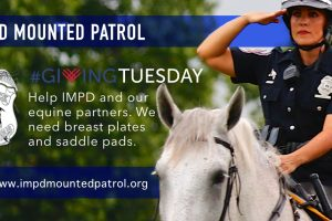 Gift saddle pads and breast plates this #GivingTuesday