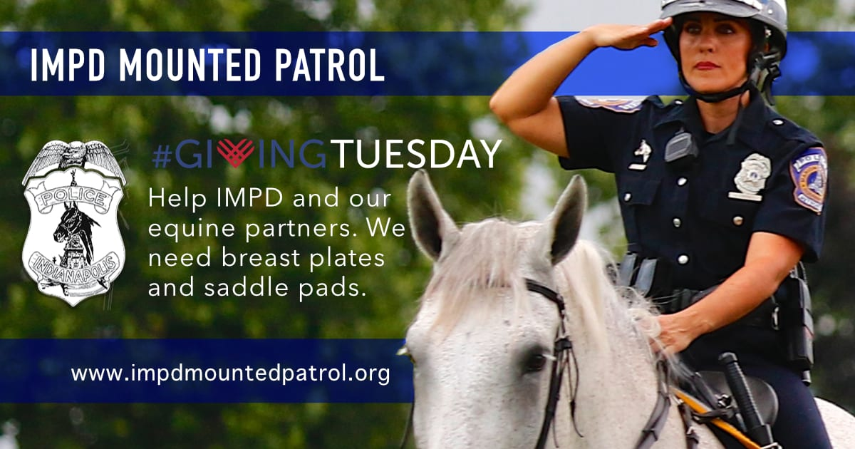 Saddle pads and breast plates for #GivingTuesday 2018
