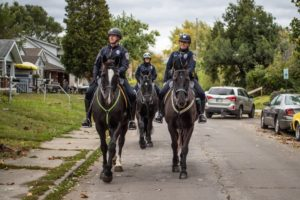 IndyStar photojournalists capture IMPD Mounted Patrol